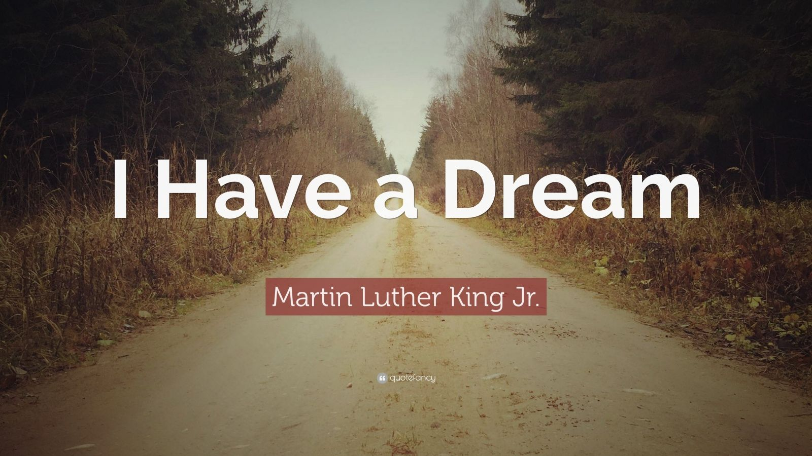 """Martin Luther King Jr. Quote: """"I Have a Dream"""" (19 ..."""