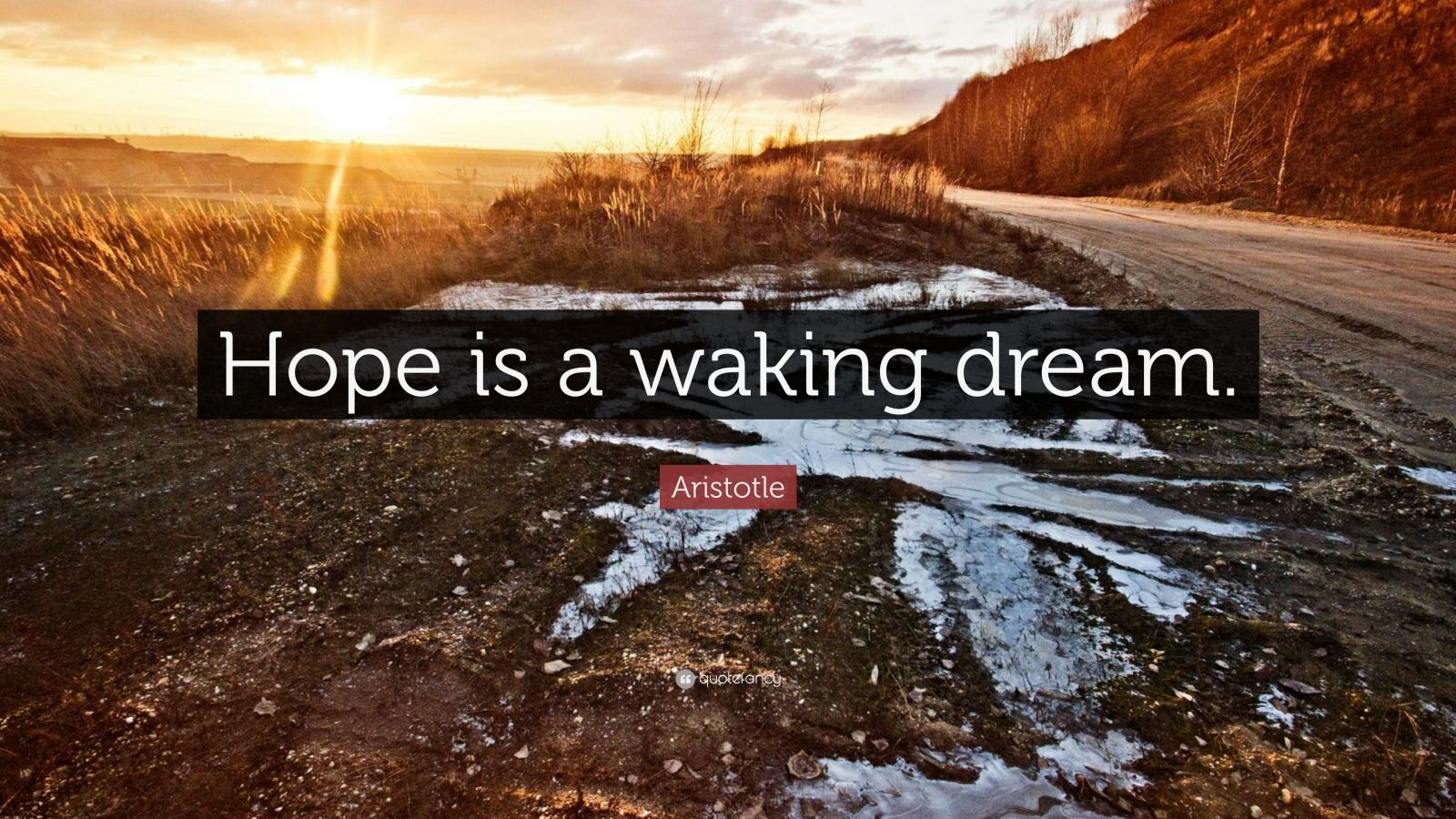 hope is a walking dream Hope is the dream of a waking man - aristotle quotes on quotations book.