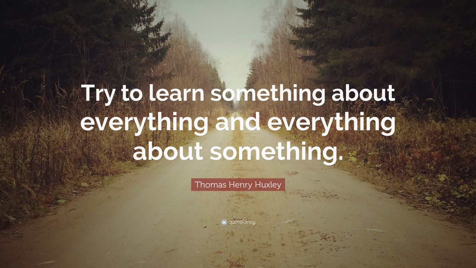 Try to #learn something about everything and everything ...  |Learn Something Everything
