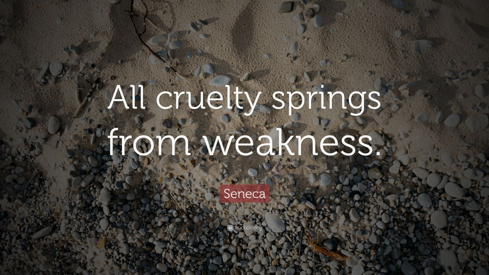 "Seneca Quote: ""All cruelty springs from weakness."""