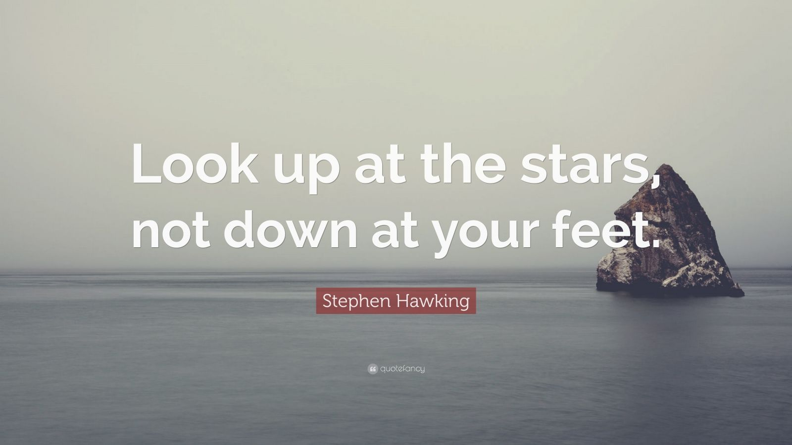 """Stephen Hawking Quote: """"Look Up At The Stars, Not Down At"""