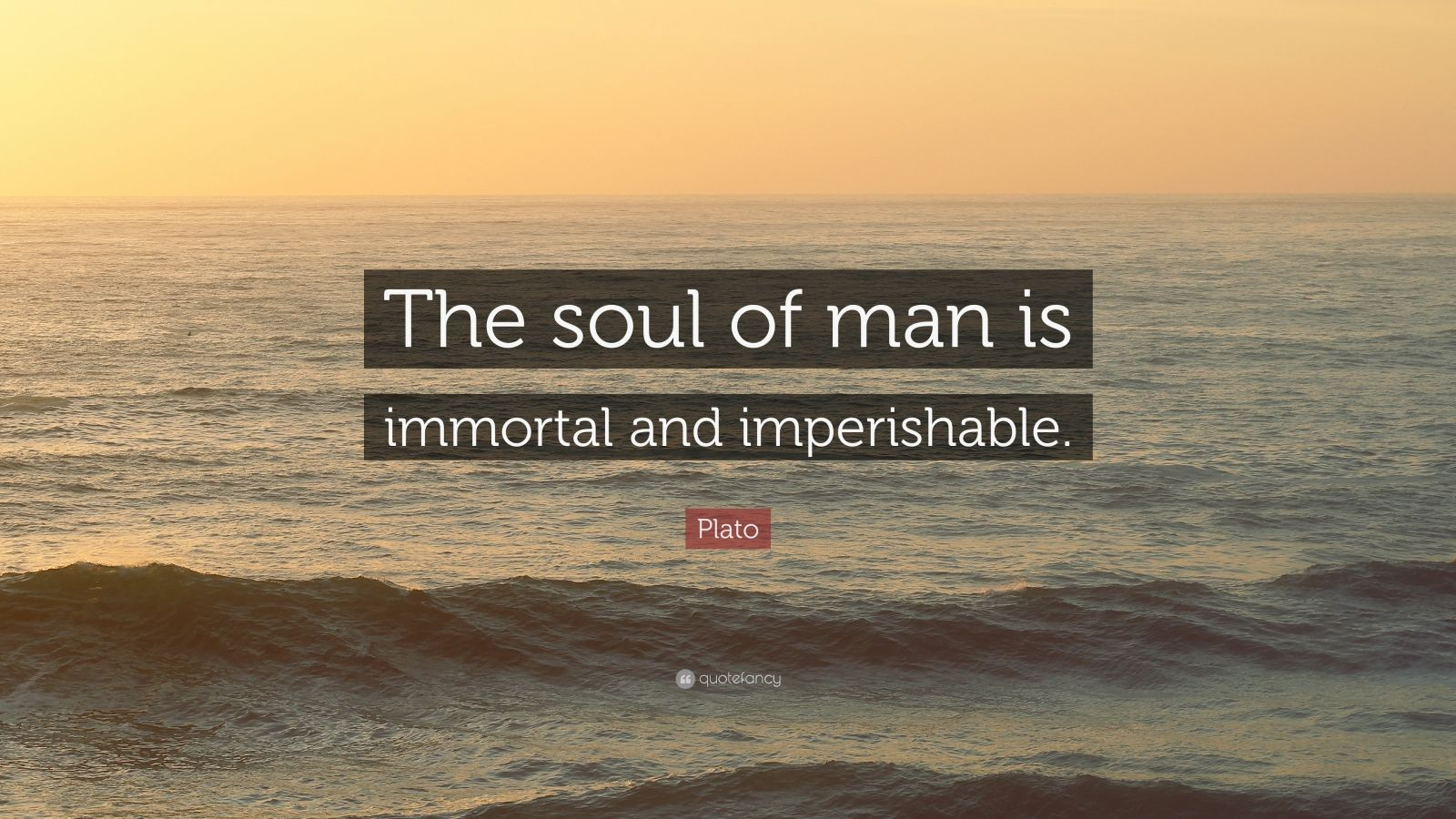 essay on the immortal soul by plato St thomas aquinas on the immortality of the soul essay  (chapter v) this text is  contrary to plato's theory of the union of the intellectual soul with the body.