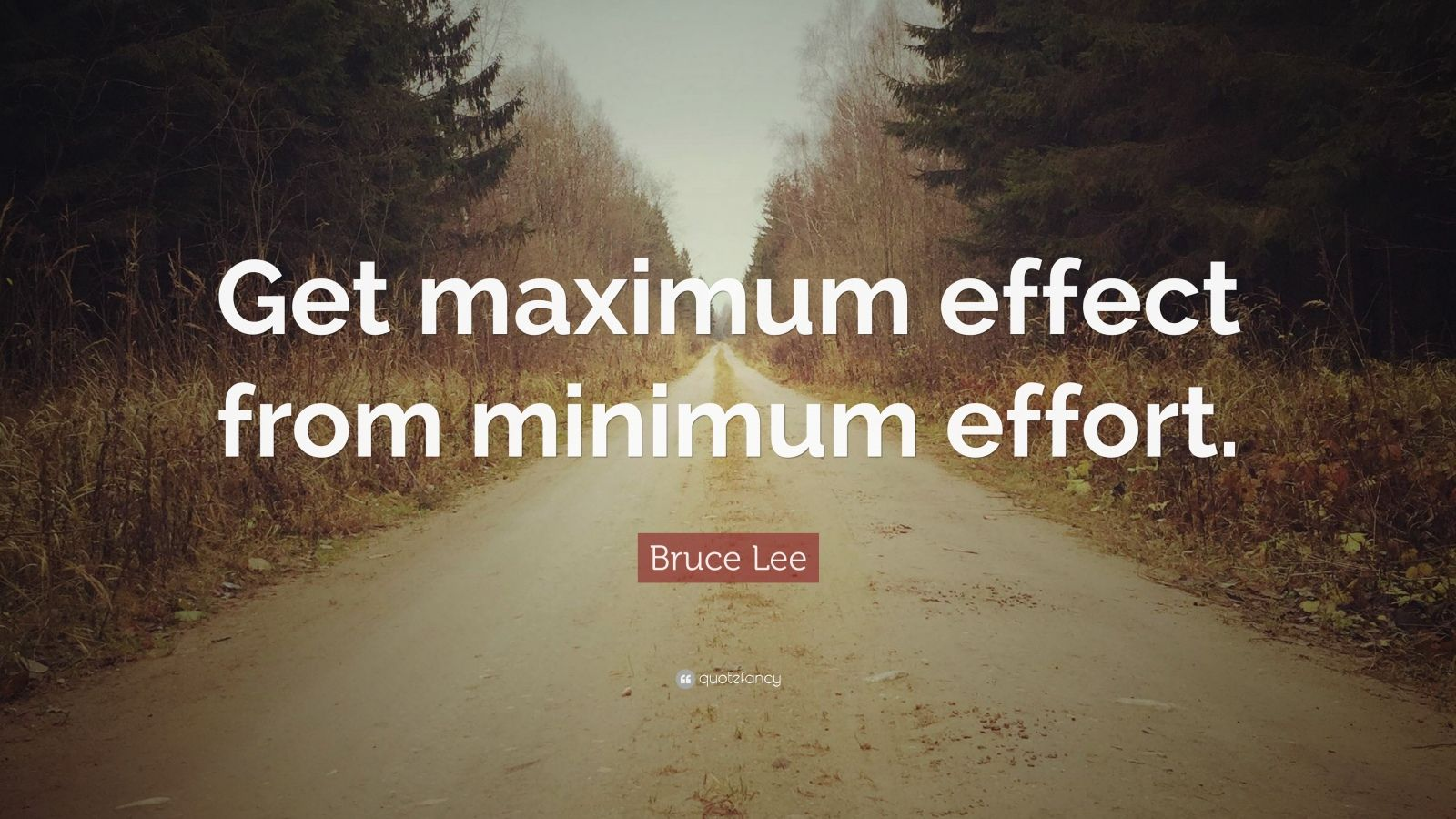 """Bruce Lee Quote: """"Get maximum effect from minimum effort."""""""