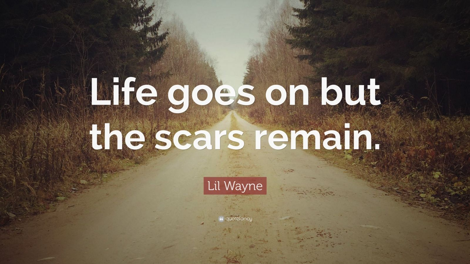 "Lil Wayne Quote: ""Life Goes On But The Scars Remain."" (12"