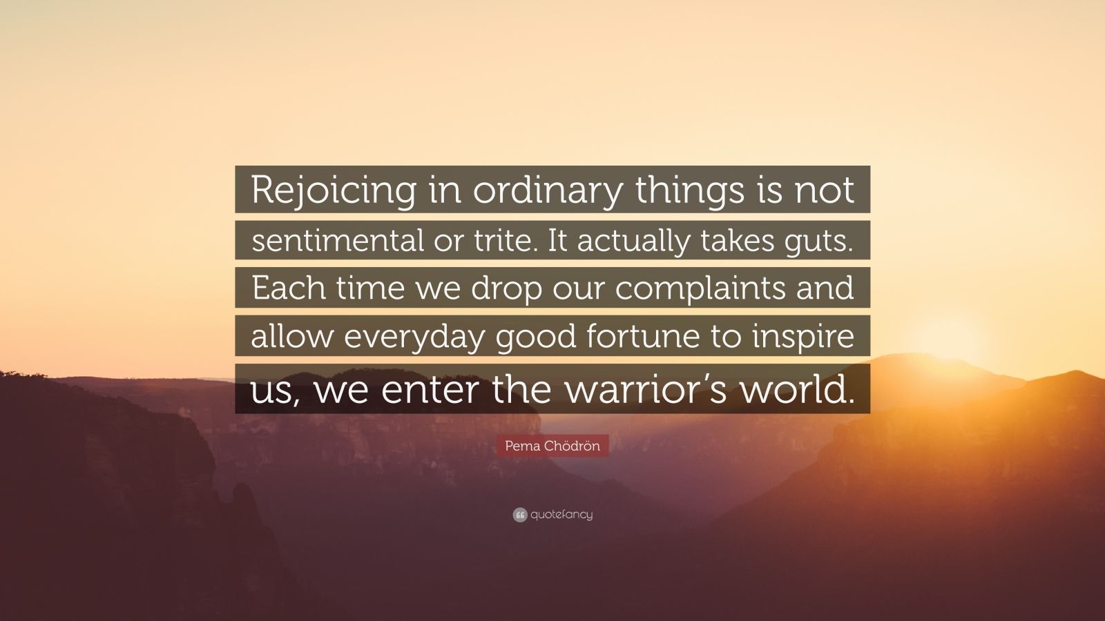 """Pema Chödrön Quote: """"Rejoicing in ordinary things is not sentimental or trite. It actually takes guts. Each time we drop our complaints and allow everyday good fortune to inspire us, we enter the warrior's world."""""""