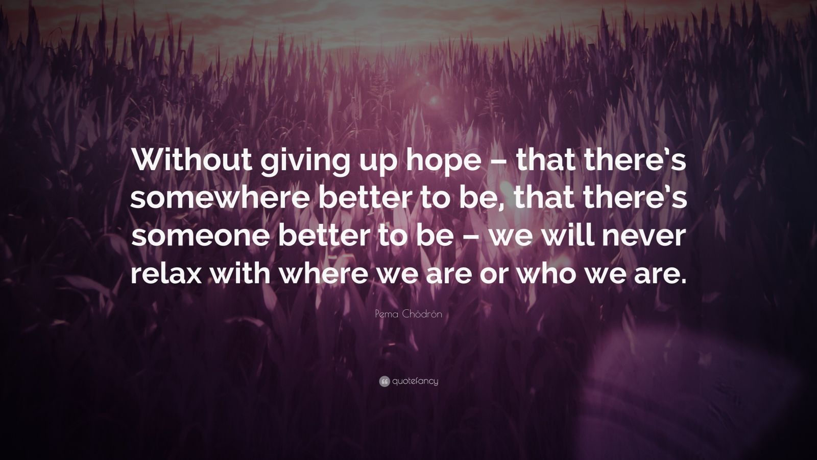 """Pema Chödrön Quote: """"Without giving up hope – that there's somewhere better to be, that there's someone better to be – we will never relax with where we are or who we are."""""""