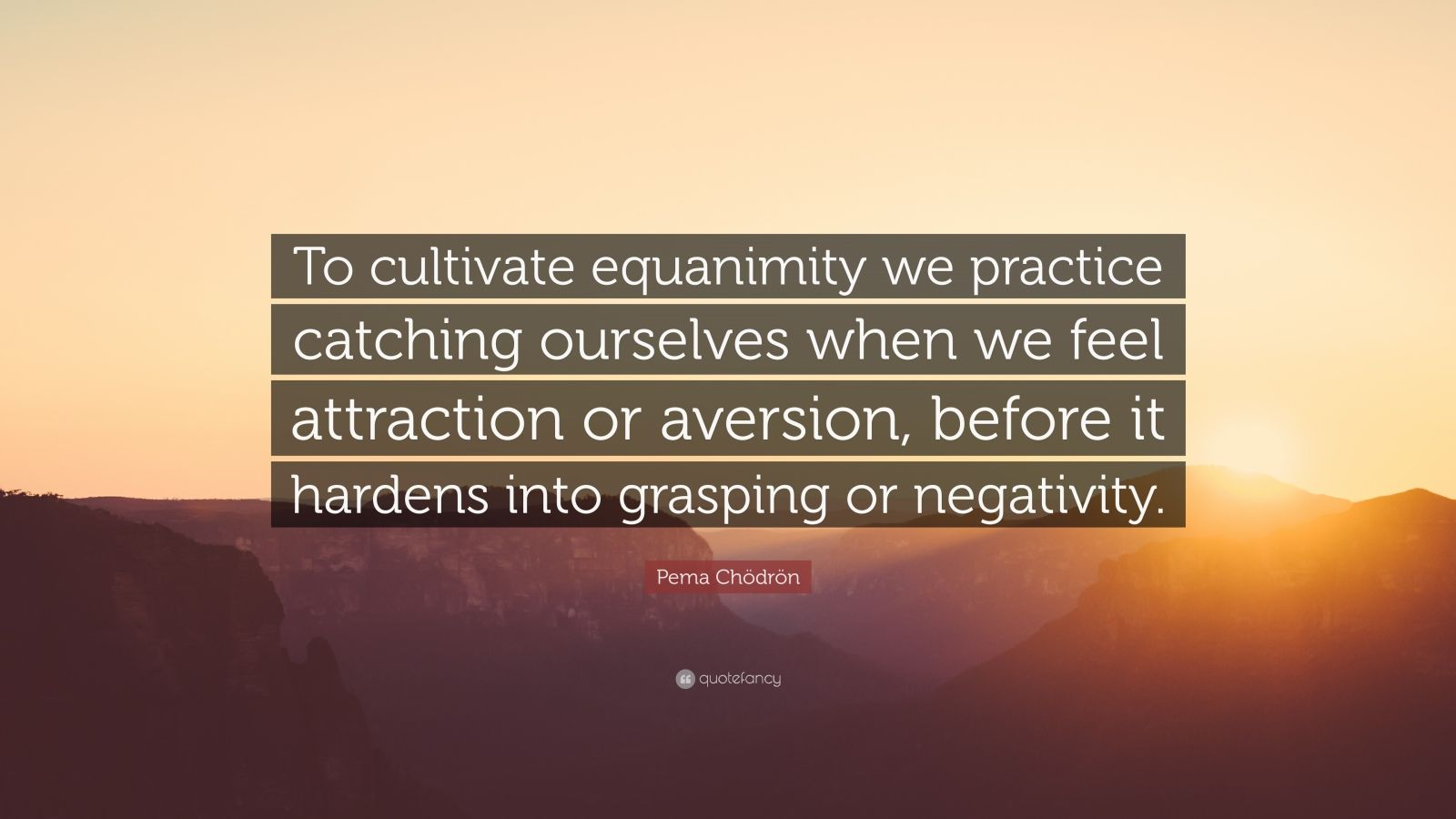 "Pema Chödrön Quote: ""To cultivate equanimity we practice catching ourselves when we feel attraction or aversion, before it hardens into grasping or negativity."""