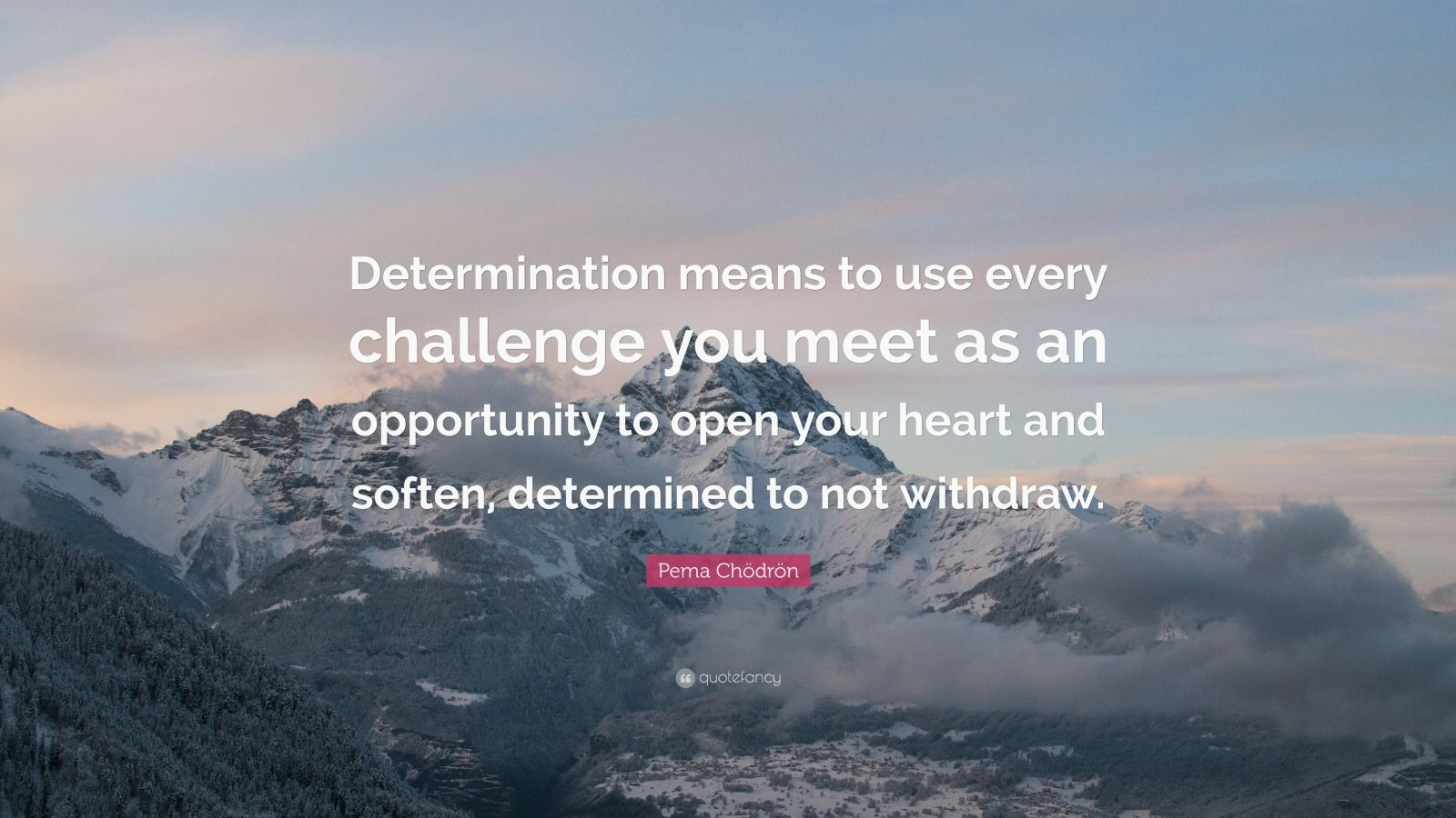 """Pema Chödrön Quote: """"Determination means to use every challenge you meet as an opportunity to open your heart and soften, determined to not withdraw."""""""