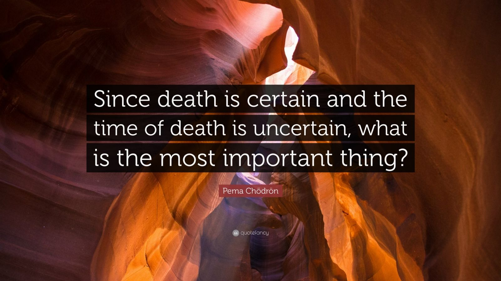 "Pema Chödrön Quote: ""Since death is certain and the time of death is uncertain, what is the most important thing?"""
