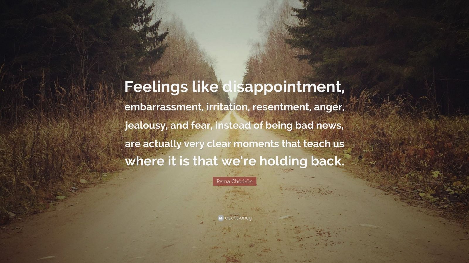 """Pema Chödrön Quote: """"Feelings like disappointment, embarrassment, irritation, resentment, anger, jealousy, and fear, instead of being bad news, are actually very clear moments that teach us where it is that we're holding back."""""""