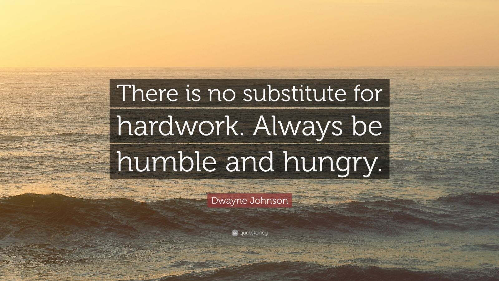 dwayne johnson quote   u201cthere is no substitute for hardwork  always be humble and hungry  u201d  12