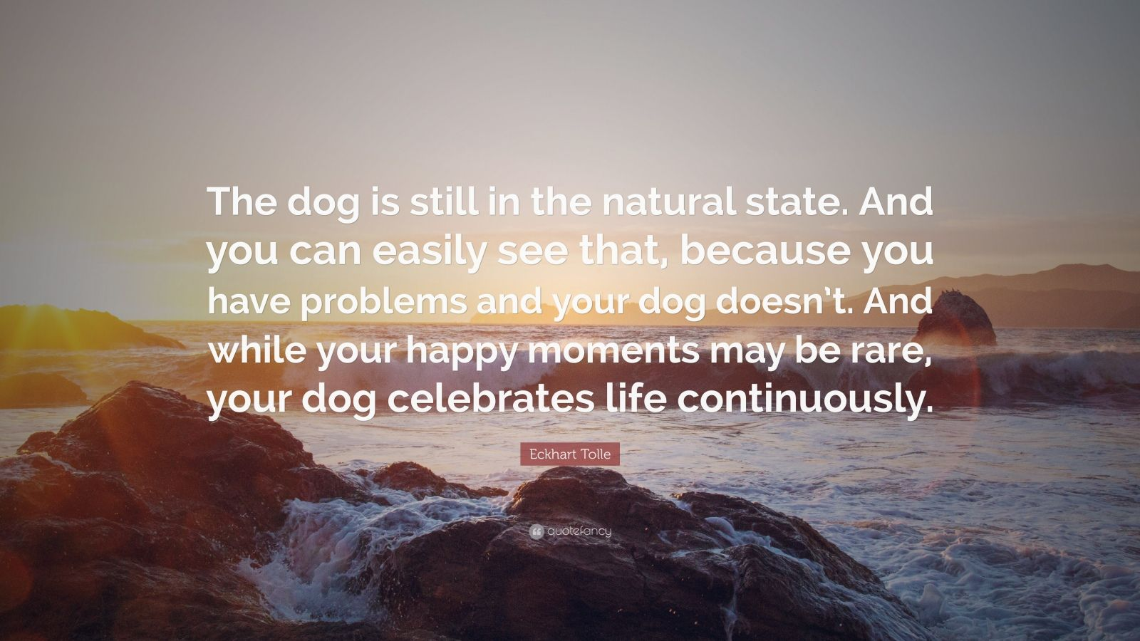 "Eckhart Tolle Quote: ""The dog is still in the natural state. And you can easily see that, because you have problems and your dog doesn't. And while your happy moments may be rare, your dog celebrates life continuously."""