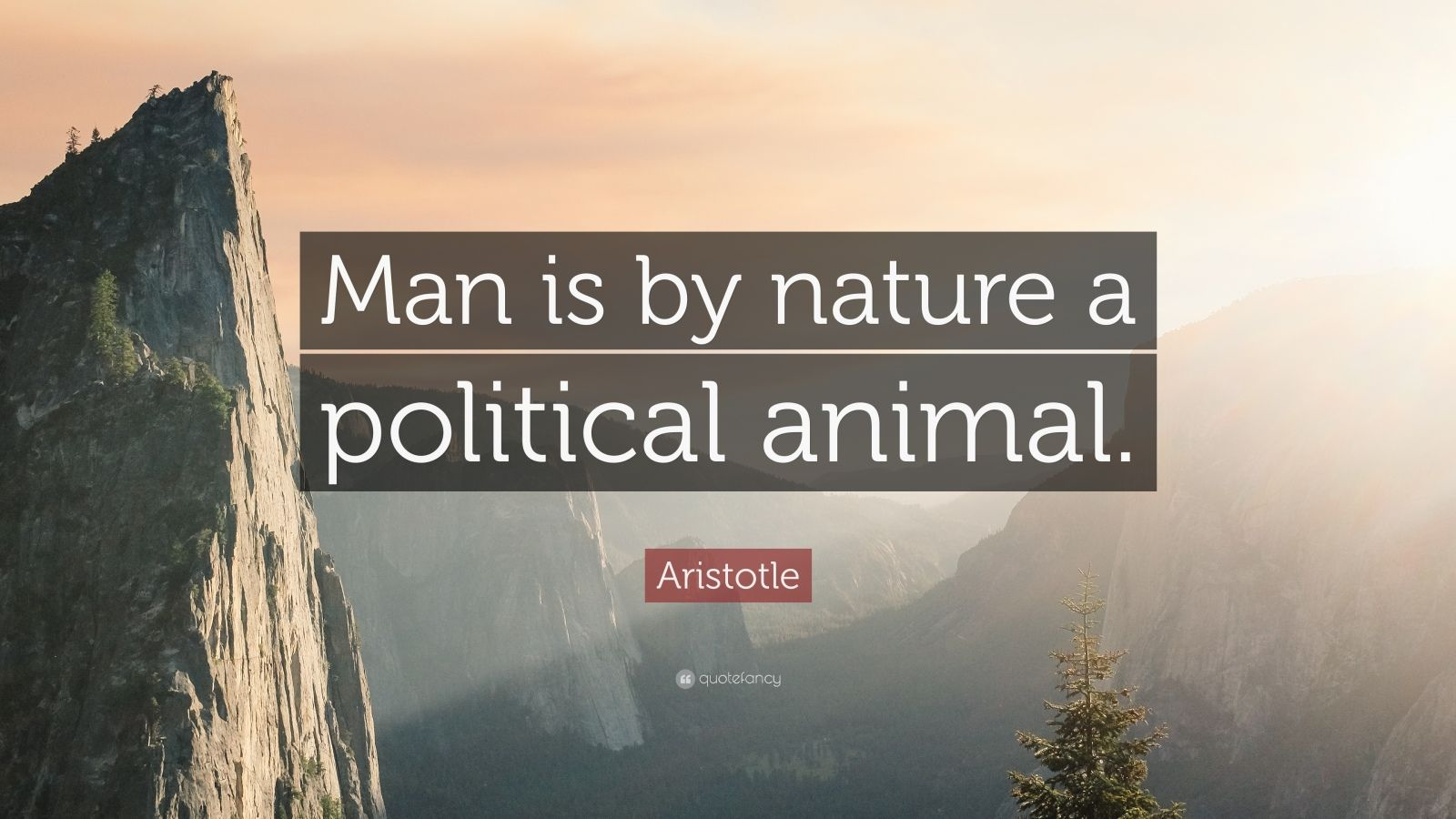 the nature of man as a political animal