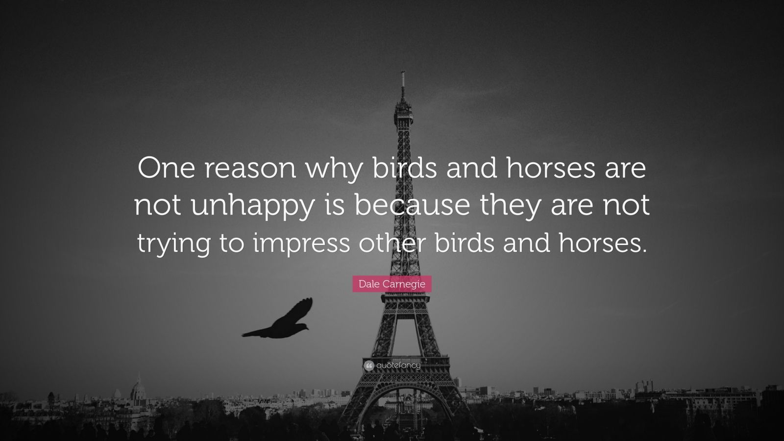 "Dale Carnegie Quote: ""One reason why birds and horses are not unhappy is because they are not trying to impress other birds and horses."""