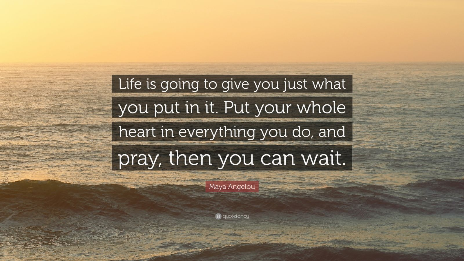 "Maya Angelou Quote: ""Life is going to give you just what you put in it. Put your whole heart in everything you do, and pray, then you can wait."""