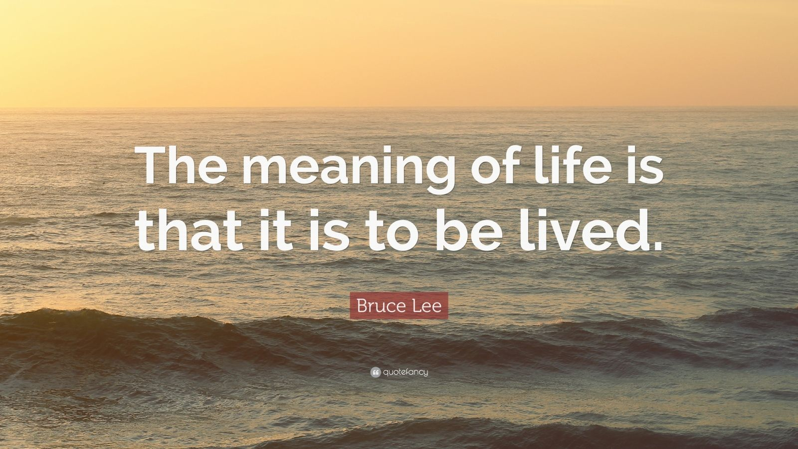 "Meaning Of Life Quotes: ""The meaning of life is that it is to be lived."" — Bruce Lee"