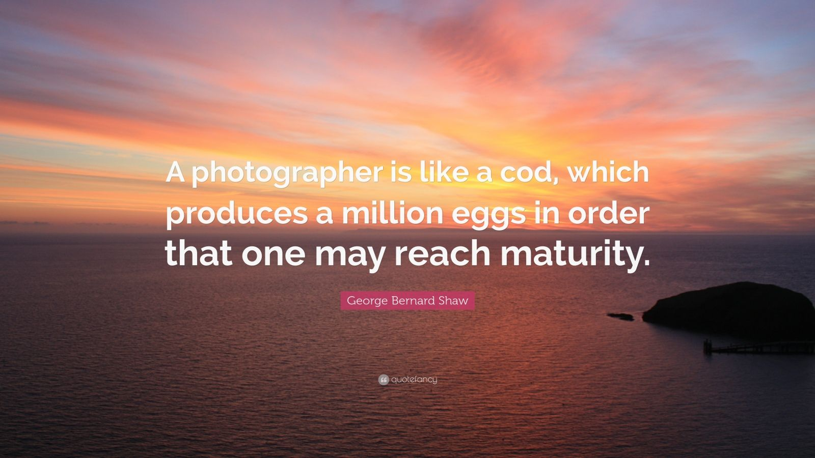 "George Bernard Shaw Quote: ""A photographer is like a cod, which produces a million eggs in order that one may reach maturity."""