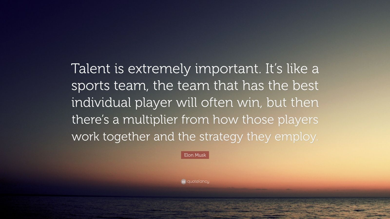 "Elon Musk Quote: ""Talent is extremely important. It's like a sports team, the team that has the best individual player will often win, but then there's a multiplier from how those players work together and the strategy they employ."""