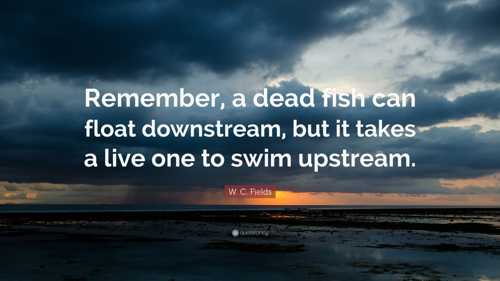 "W. C. Fields Quote: ""Remember, a dead fish can float downstream, but it takes a live one to swim upstream."""