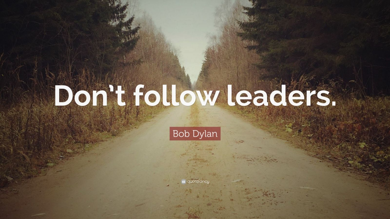 dont follow the leader What kind of leader are you what kind of leaders surround you what are the best books and sources on leadership what kind of leader do you think you should strive to be what is the most.