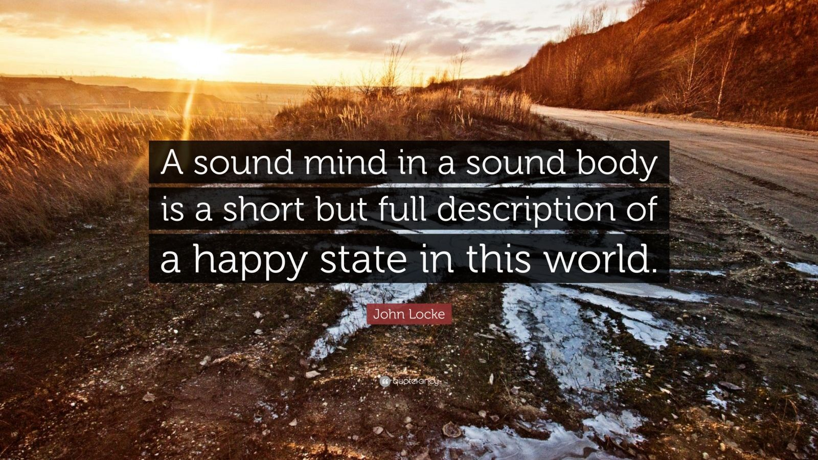 "John Locke Quote: ""A sound mind in a sound body is a short but full description of a happy state in this world."""