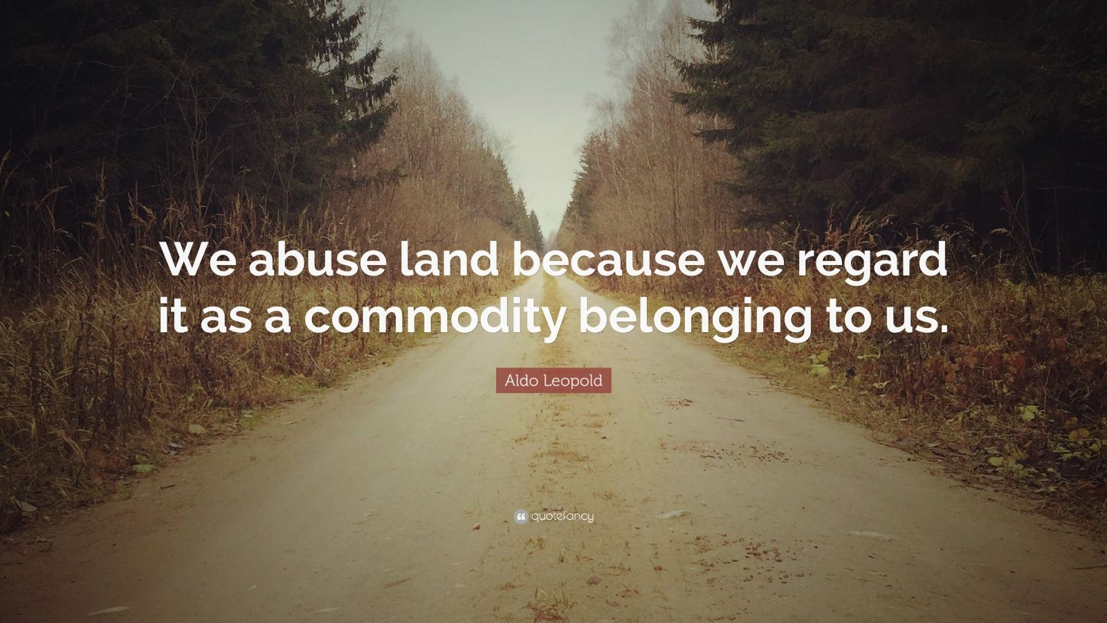 """Aldo Leopold Quote: """"We abuse land because we regard it as a commodity belonging to us."""""""