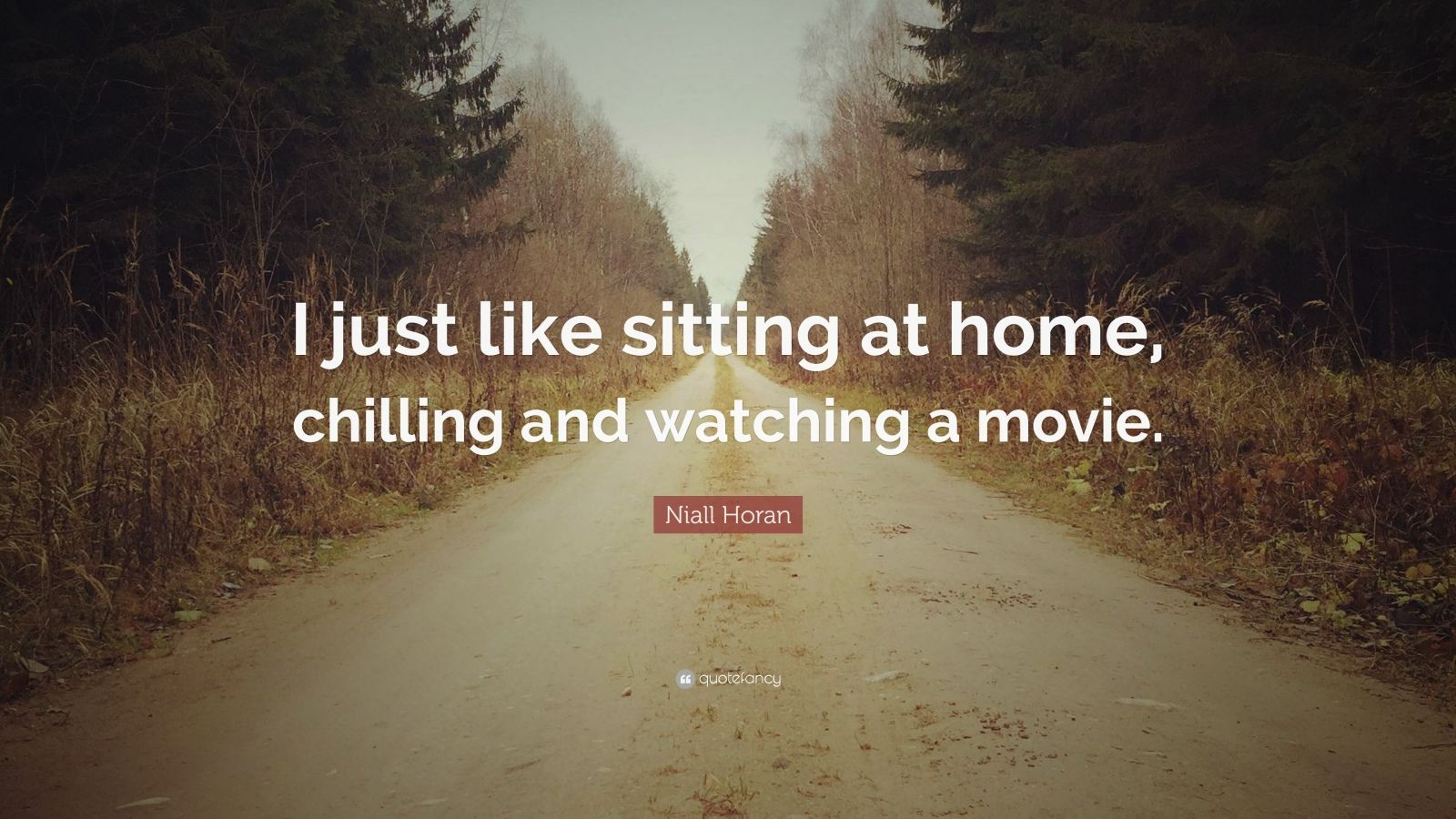 """Niall Horan Quote: """"I just like sitting at home, chilling and watching a movie."""""""