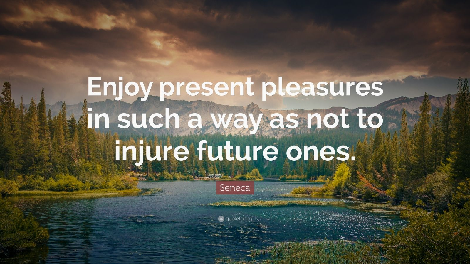 """Seneca Quote: """"Enjoy present pleasures in such a way as not to injure future ones."""""""