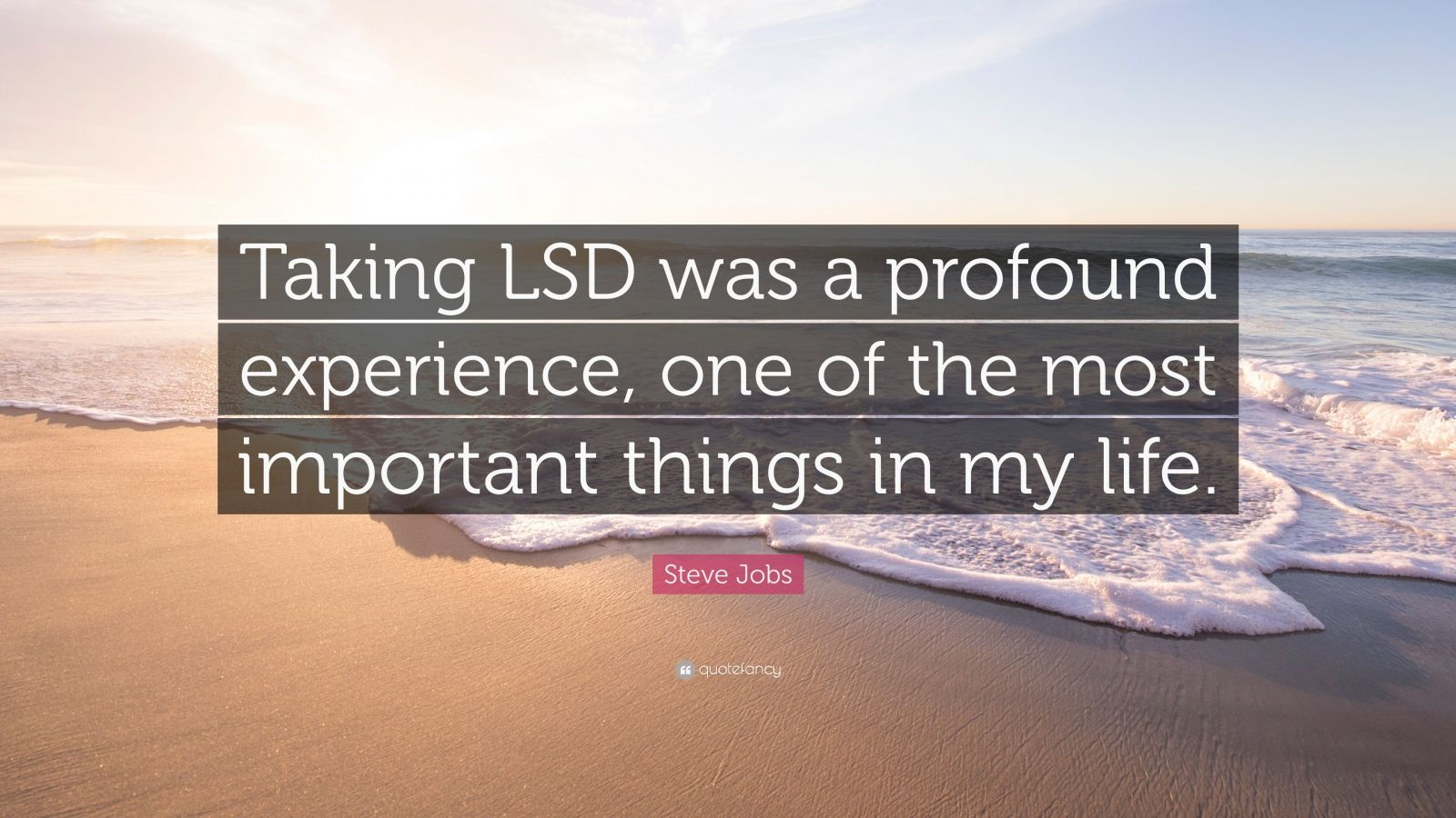 "Steve Jobs Quote: ""Taking LSD was a profound experience, one of the most important things in my life."""