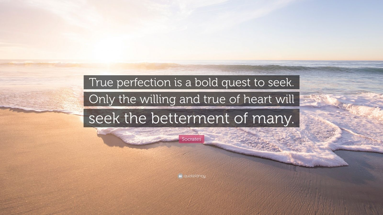 "Socrates Quote: ""True perfection is a bold quest to seek. Only the willing and true of heart will seek the betterment of many."""