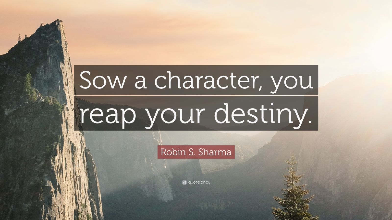 "Robin S. Sharma Quote: ""Sow a character, you reap your destiny."""