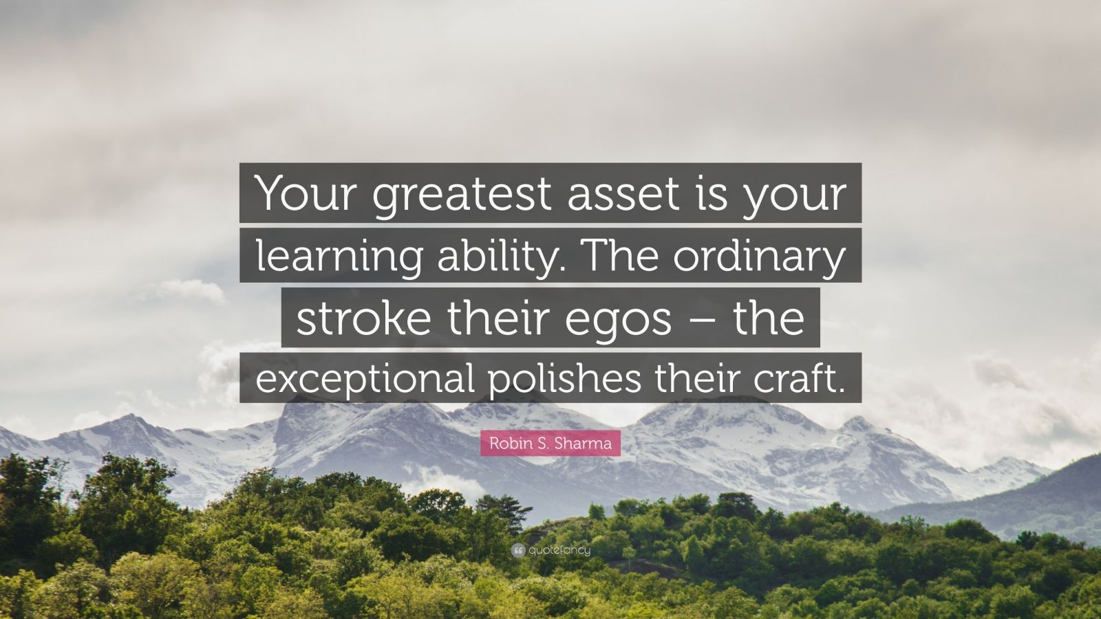 """Robin S. Sharma Quote: """"Your greatest asset is your learning ability. The ordinary stroke their egos – the exceptional polishes their craft."""""""