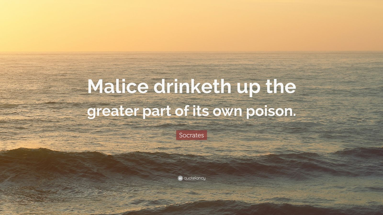 """Socrates Quote: """"Malice drinketh up the greater part of its own poison."""""""
