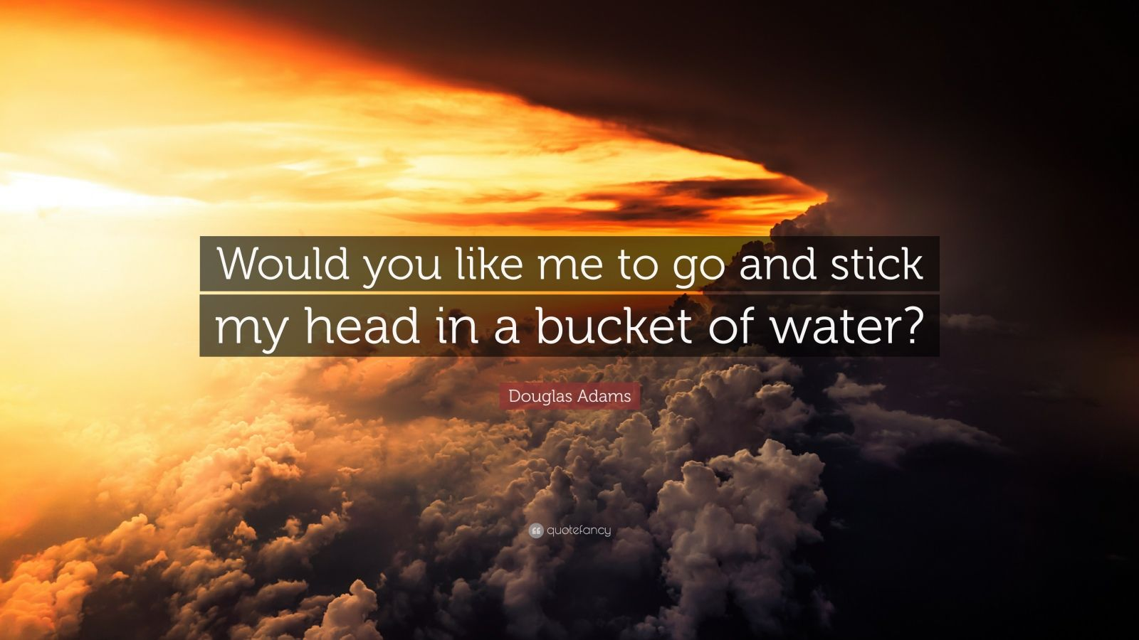 """Douglas Adams Quote: """"Would you like me to go and stick my head in a bucket of water?"""""""