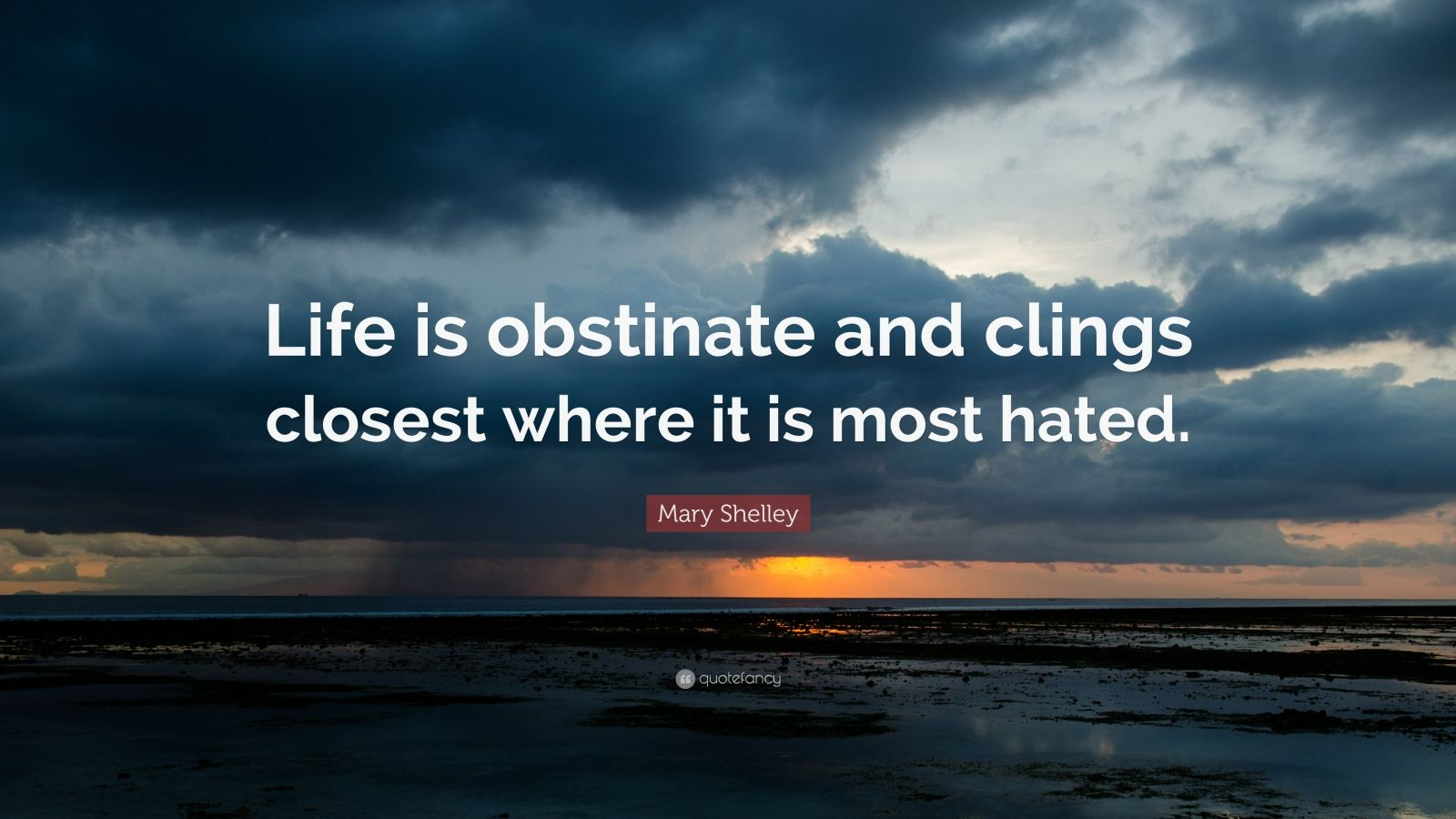 "Mary Shelley Quote: ""Life is obstinate and clings closest where it is most hated."""