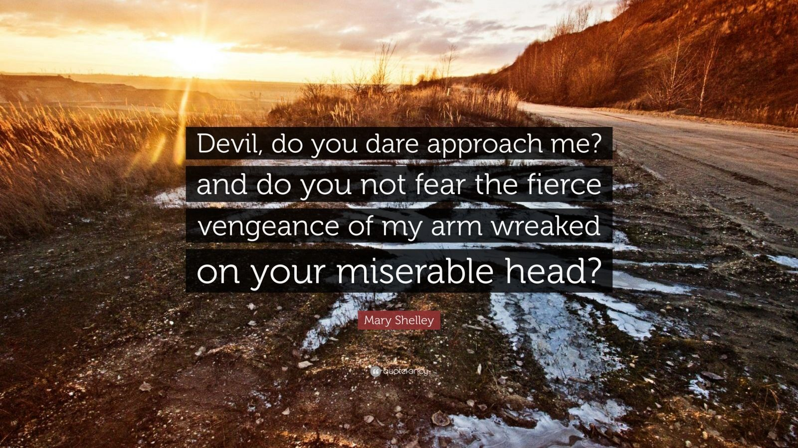 "Mary Shelley Quote: ""Devil, do you dare approach me? and do you not fear the fierce vengeance of my arm wreaked on your miserable head?"""