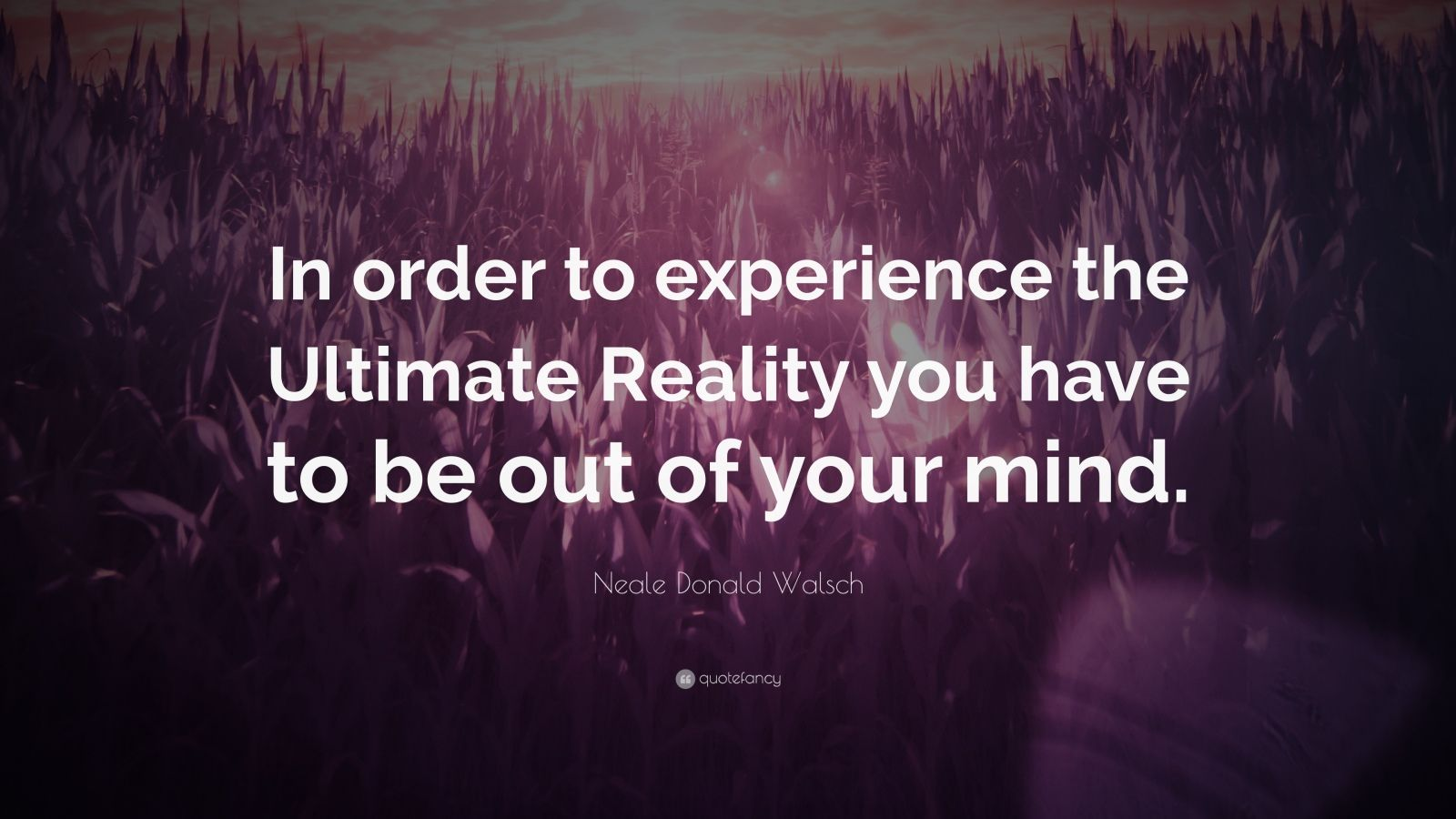 """Neale Donald Walsch Quote: """"In order to experience the Ultimate Reality you have to be out of your mind."""""""