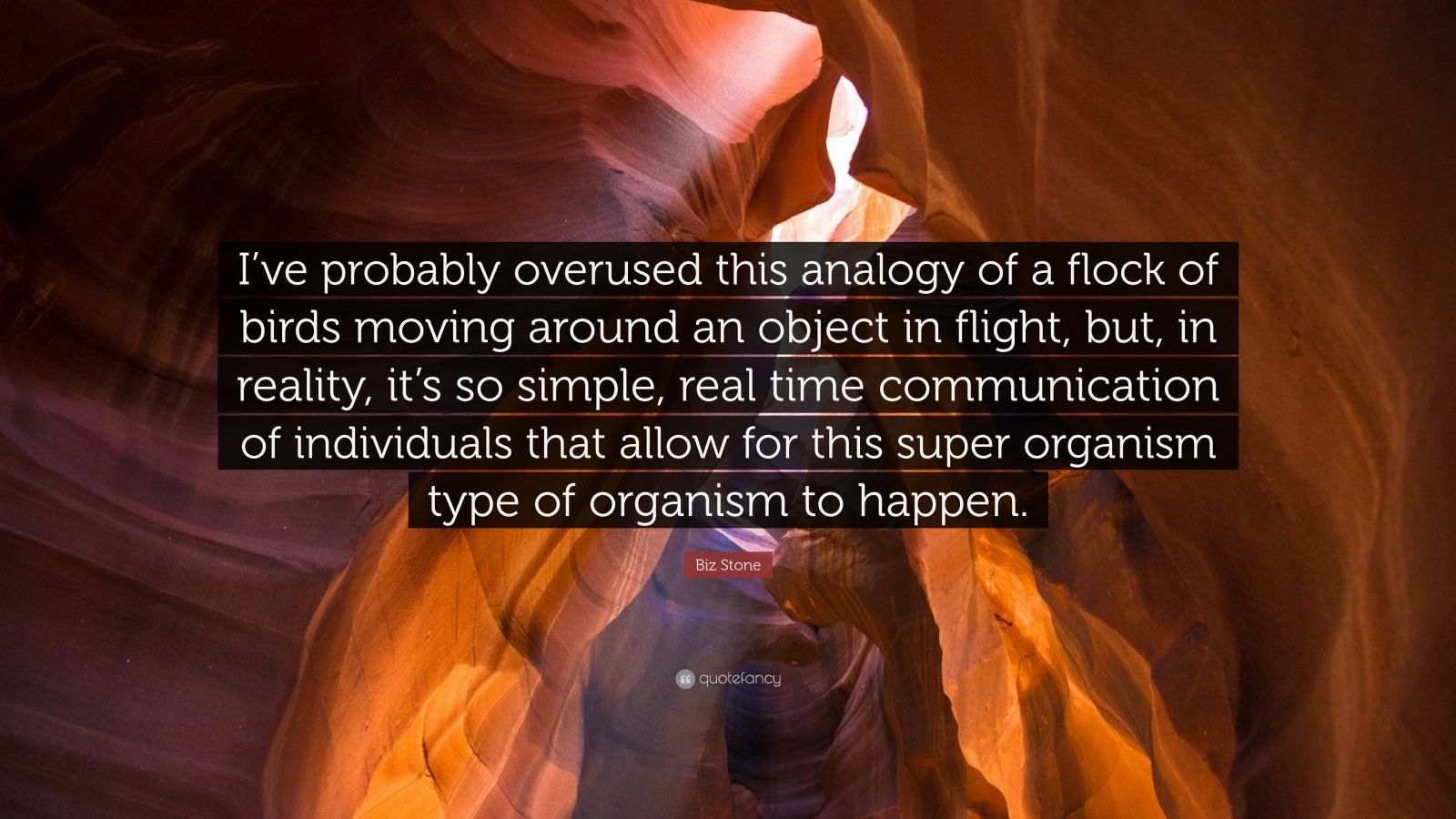 "Biz Stone Quote: ""I've probably overused this analogy of a flock of birds moving around an object in flight, but, in reality, it's so simple, real time communication of individuals that allow for this super organism type of organism to happen."""