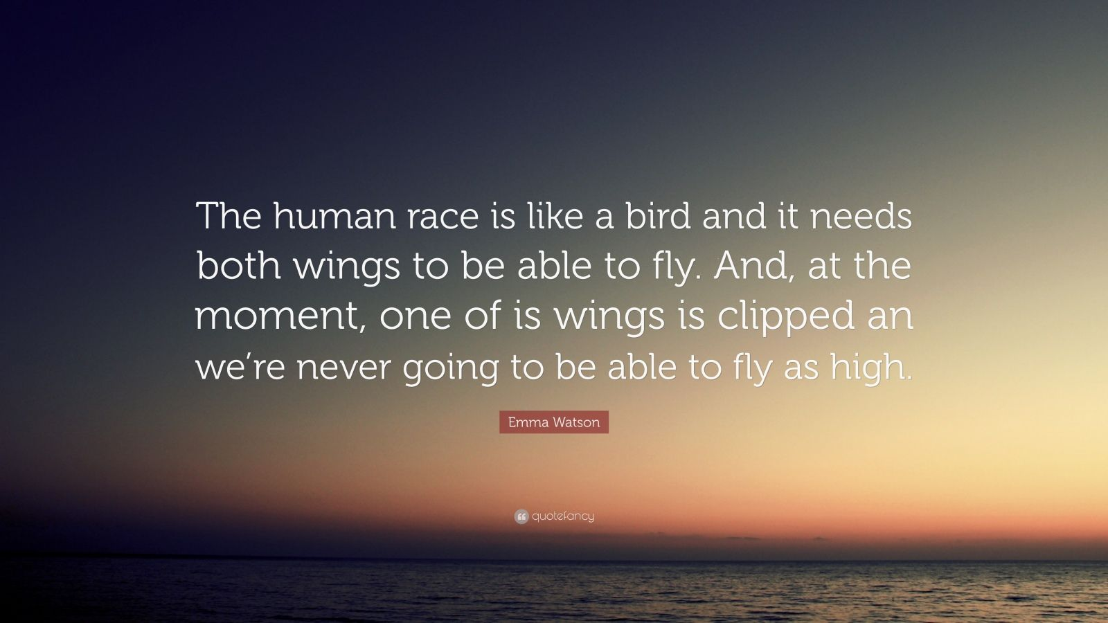 """Emma Watson Quote: """"The human race is like a bird and it needs both wings to be able to fly. And, at the moment, one of is wings is clipped an we're never going to be able to fly as high."""""""