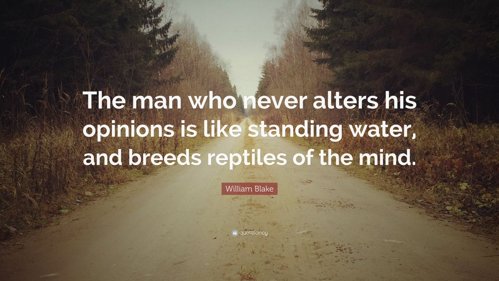 """William Blake Quote: """"The man who never alters his opinions is like standing water, and breeds reptiles of the mind."""""""