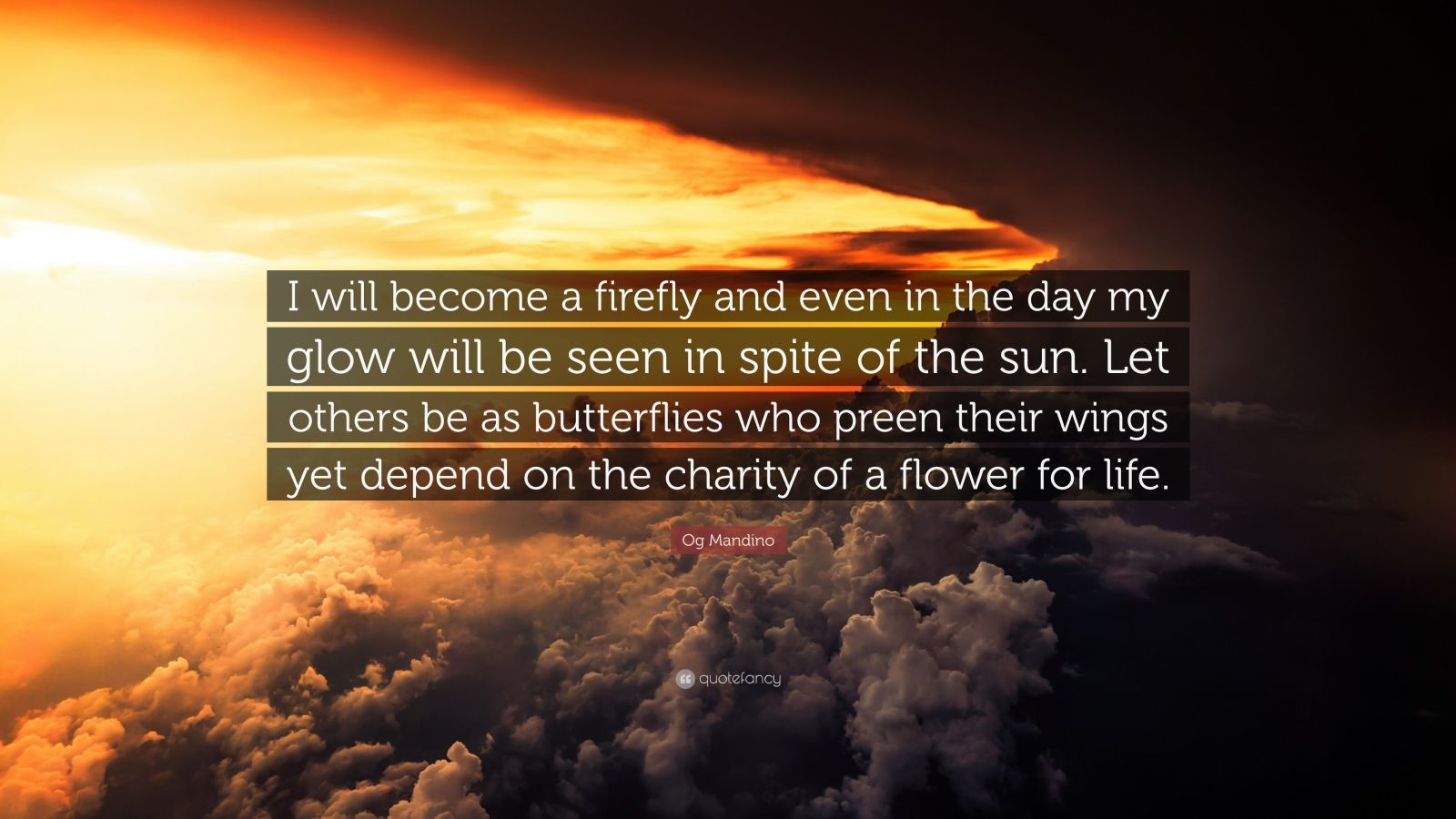 "Og Mandino Quote: ""I will become a firefly and even in the day my glow will be seen in spite of the sun. Let others be as butterflies who preen their wings yet depend on the charity of a flower for life."""