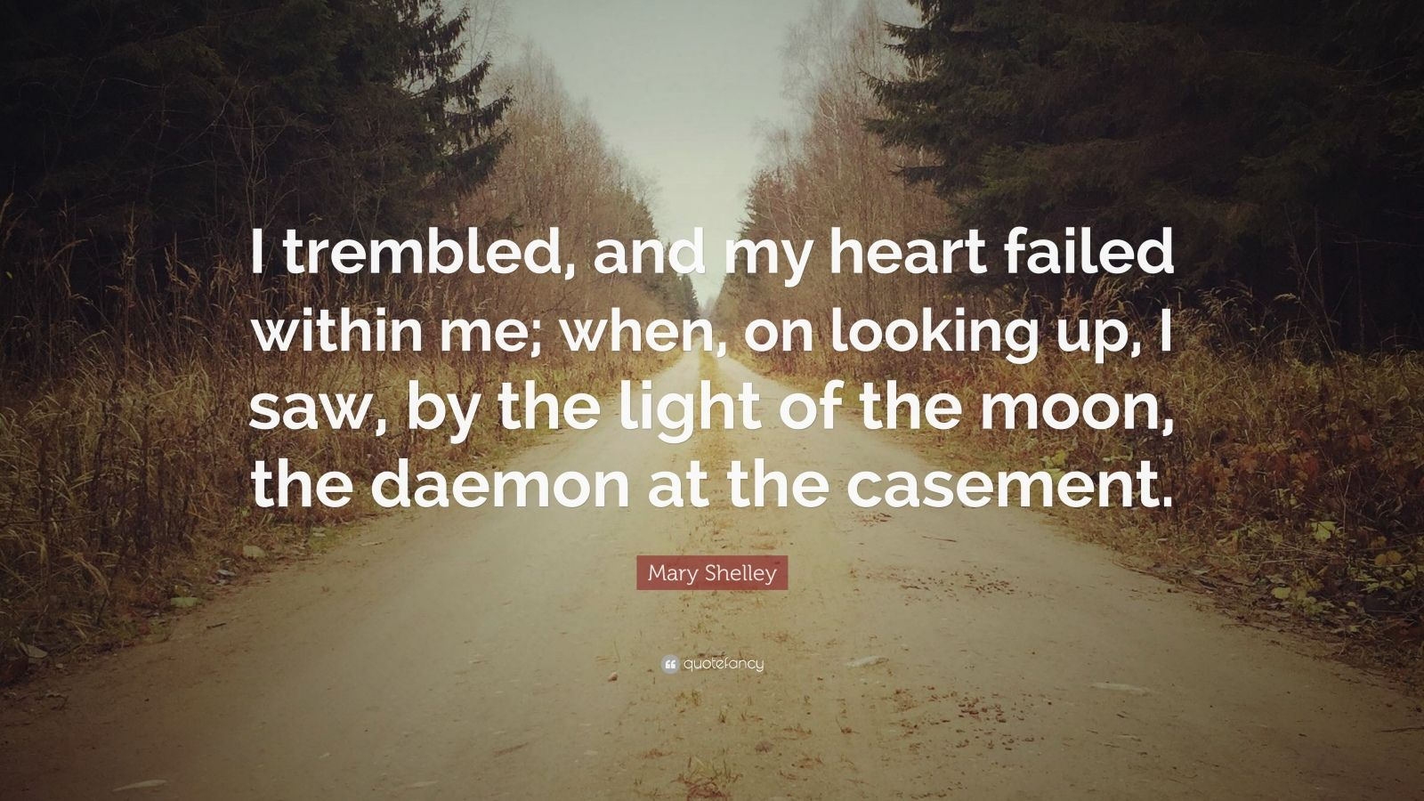 """Mary Shelley Quote: """"I trembled, and my heart failed within me; when, on looking up, I saw, by the light of the moon, the daemon at the casement."""""""