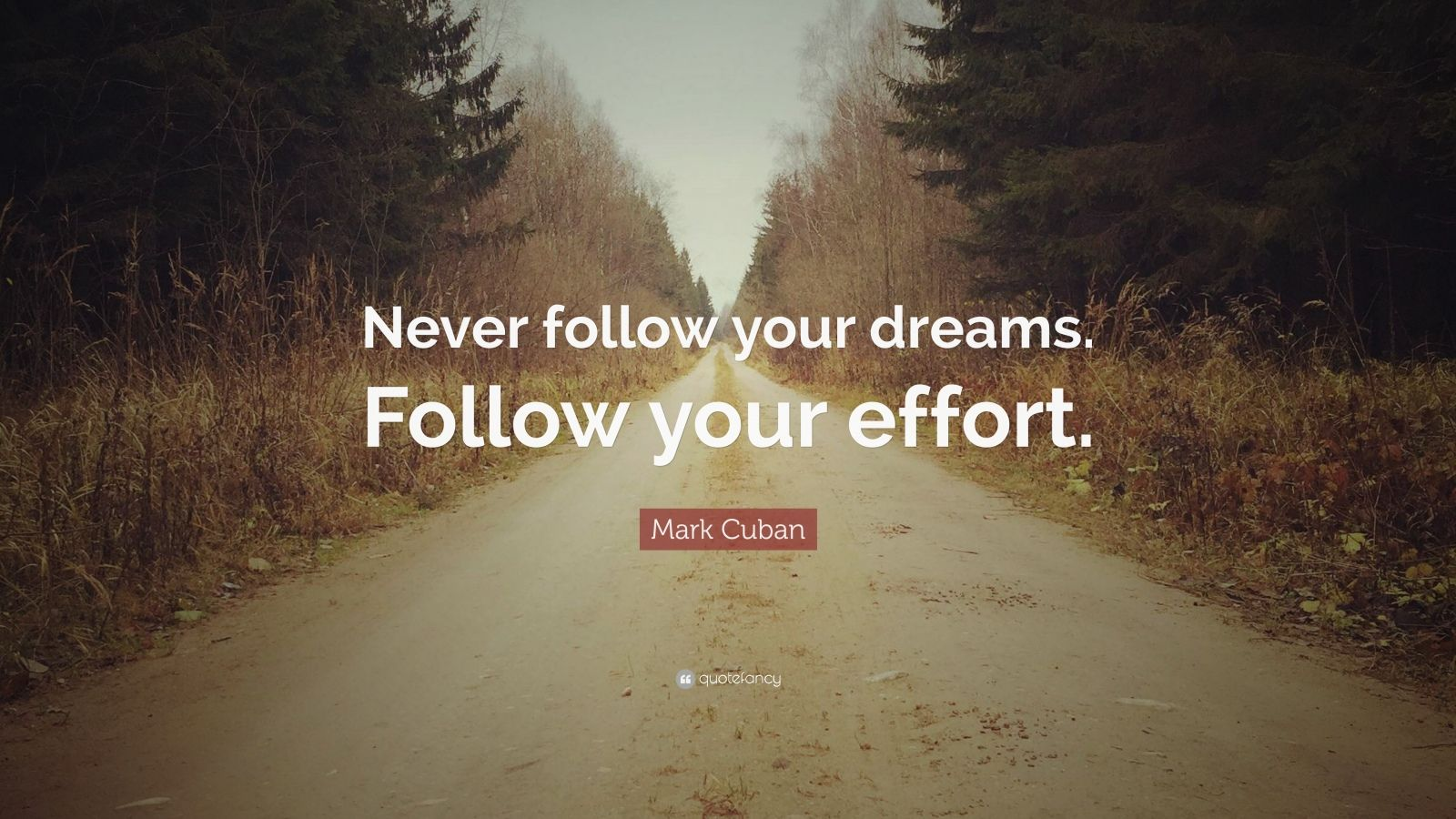 "Mark Cuban Quote: ""Never follow your dreams. Follow your effort."""