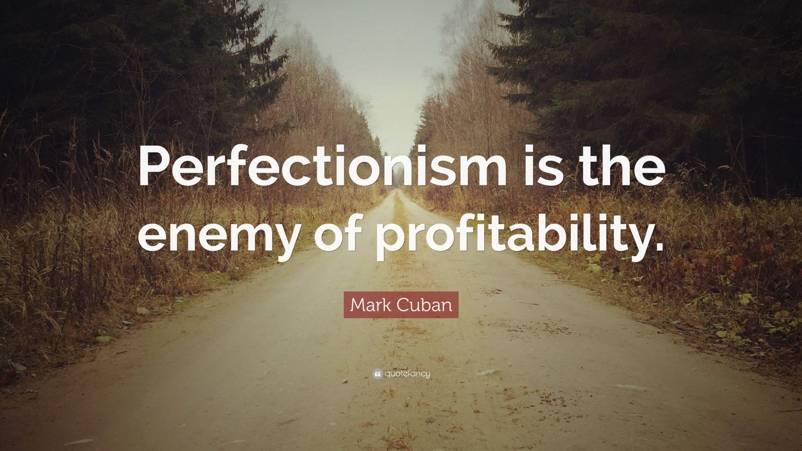 "Mark Cuban Quote: ""Perfectionism is the enemy of profitability."""