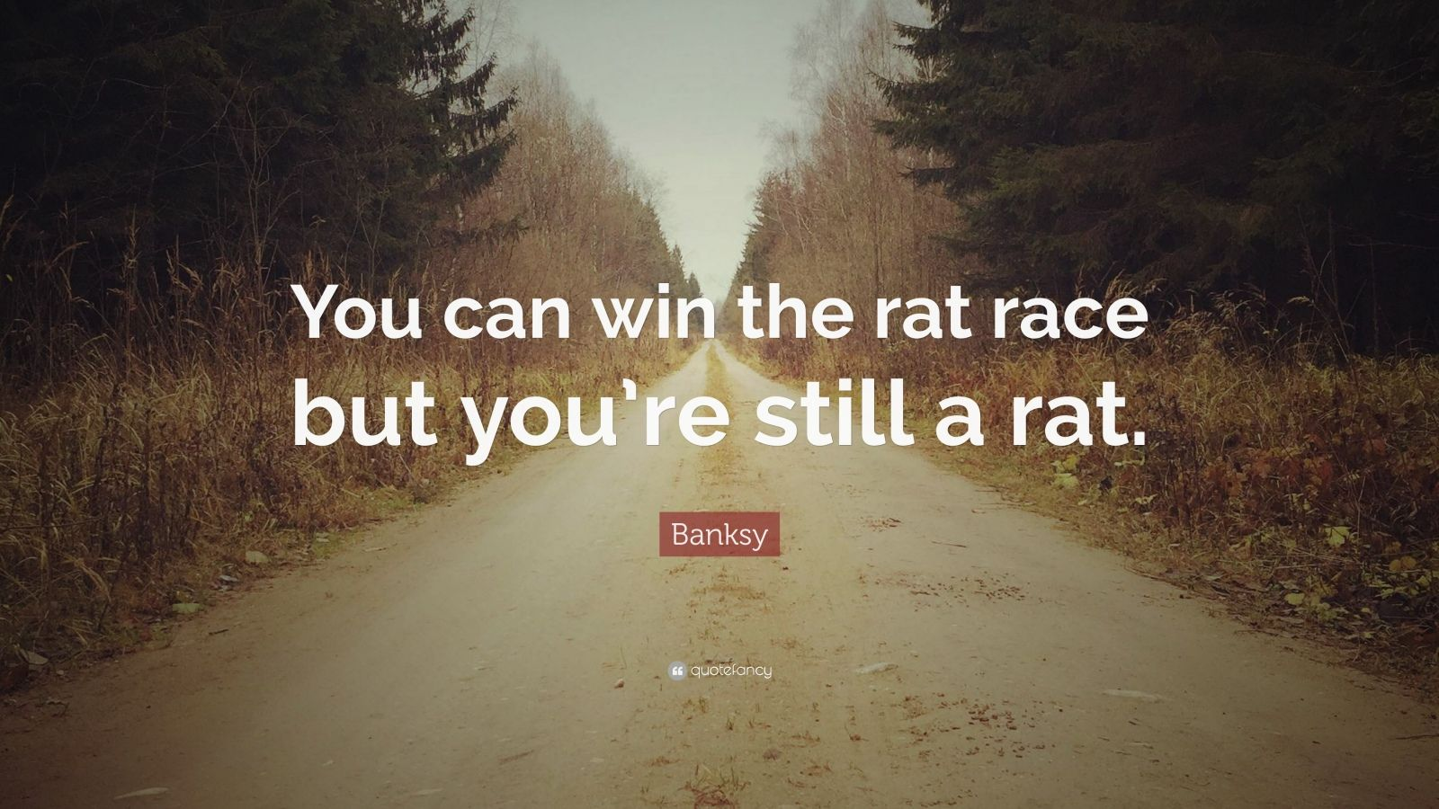 """Banksy Quote: """"You can win the rat race but you're still a rat."""""""