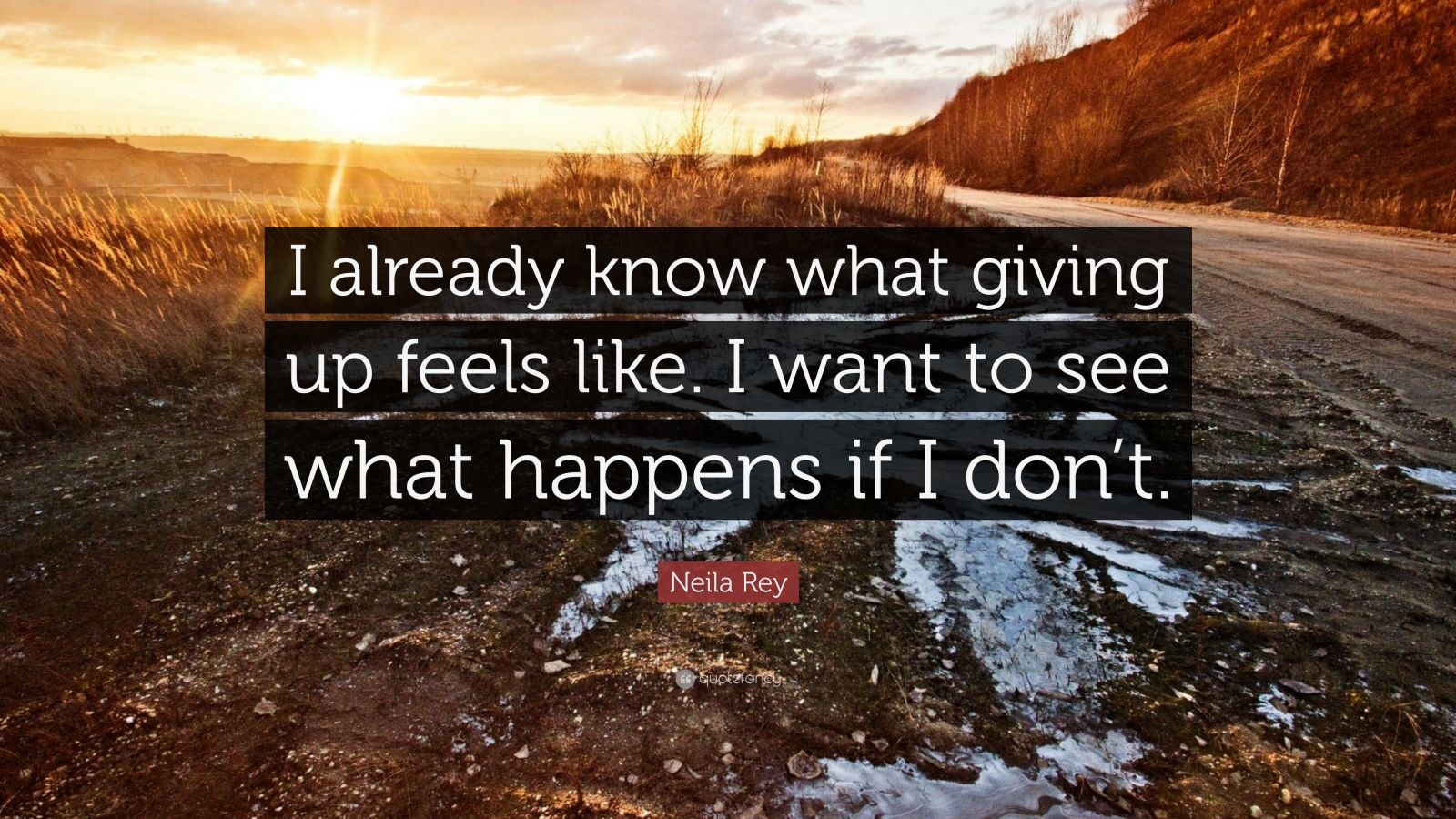 "Neila Rey Quote: ""I already know what giving up feels like. I want to see what happens if I don't."""