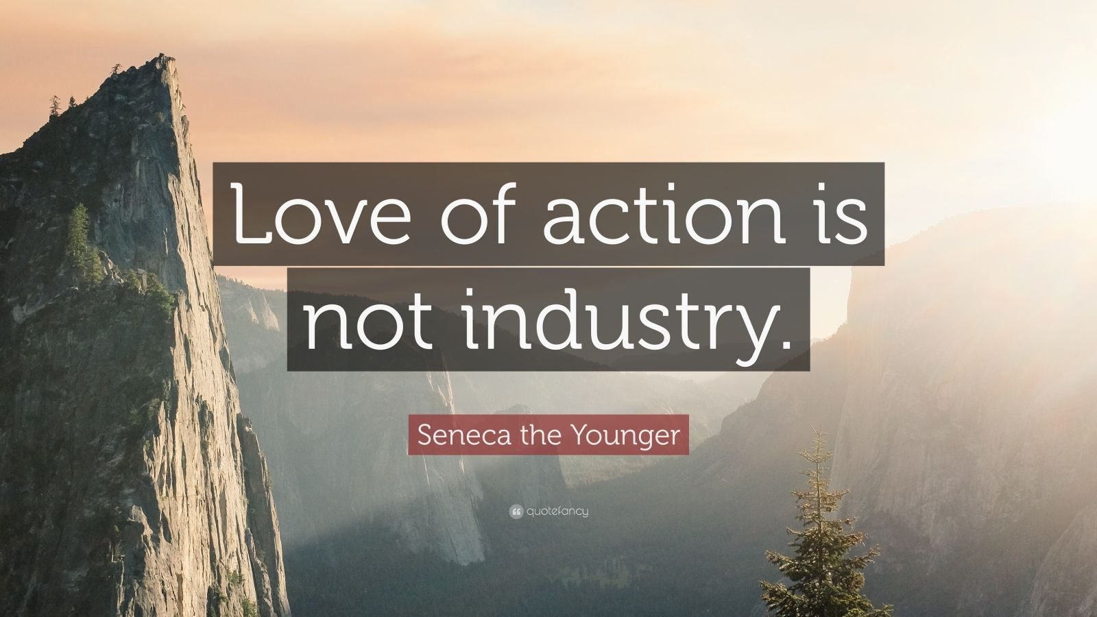 """Seneca the Younger Quote: """"Love of action is not industry."""""""