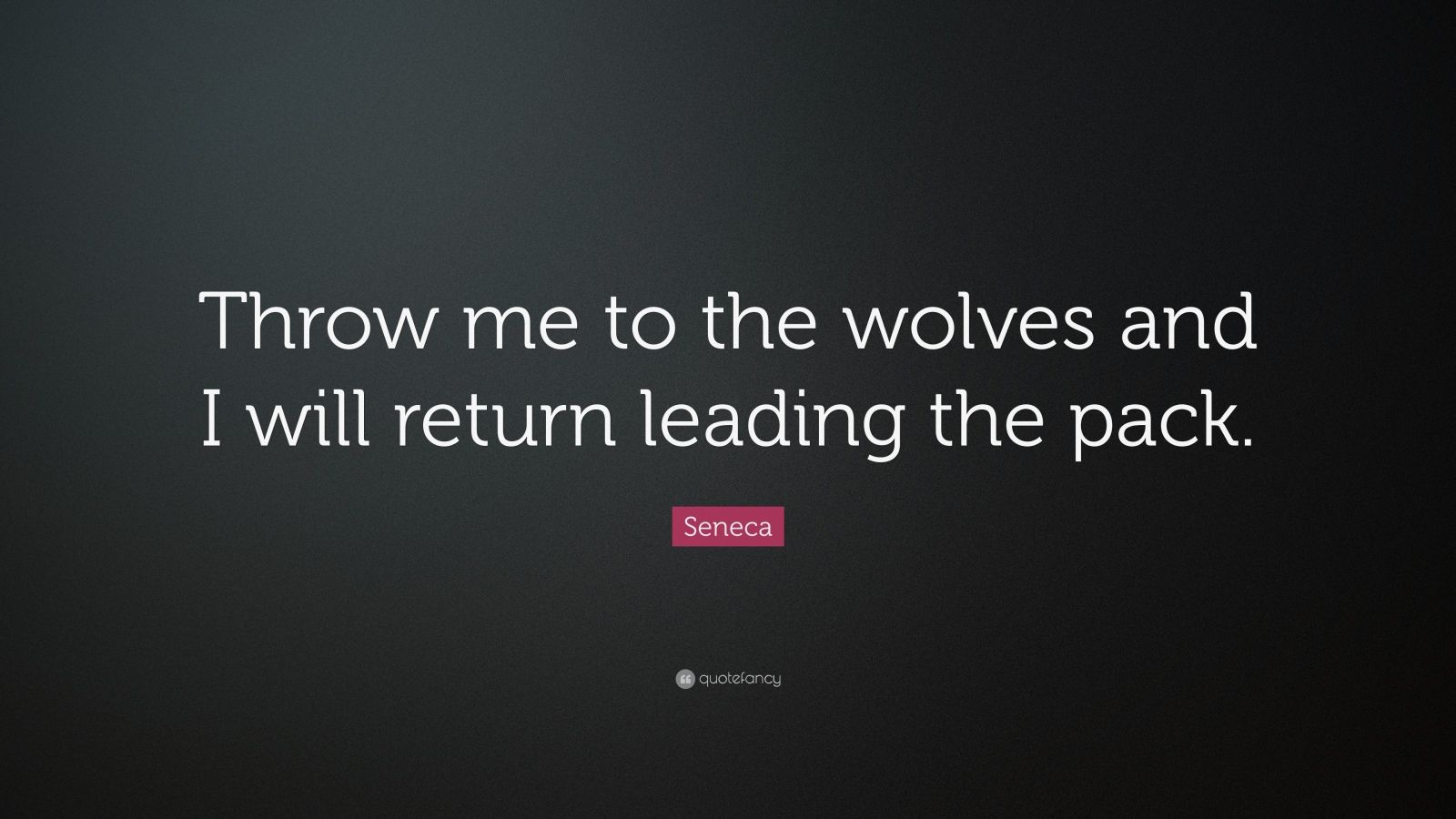 Love Quotes Wallpapers Pack: Wolf quotes on lone.