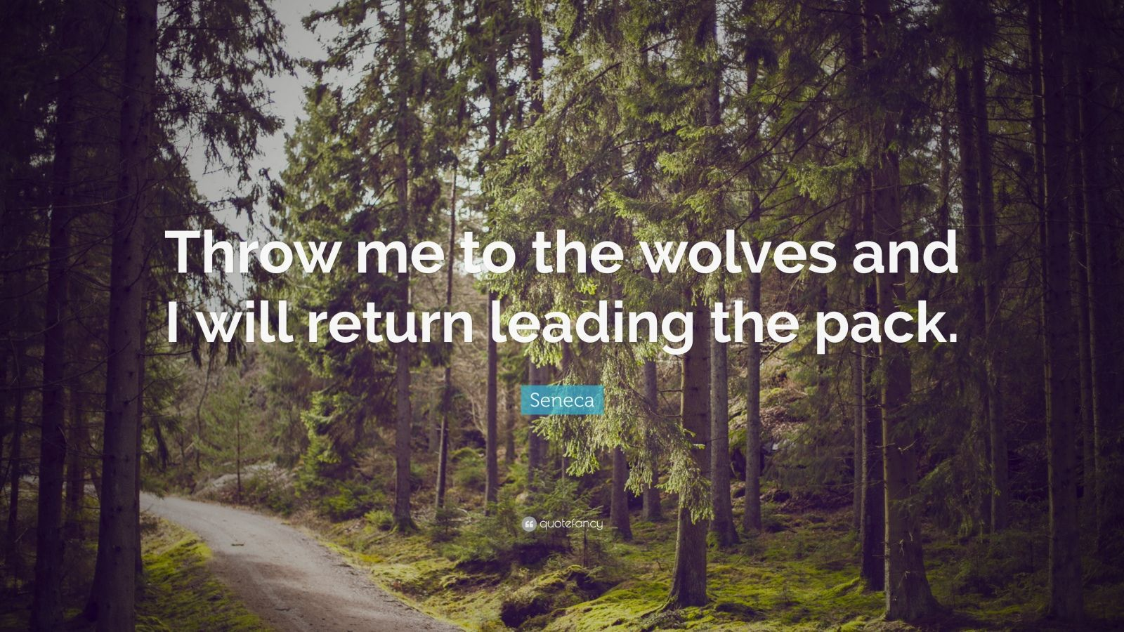 "Seneca Quote: ""Throw me to the wolves and I will return leading the pack."""
