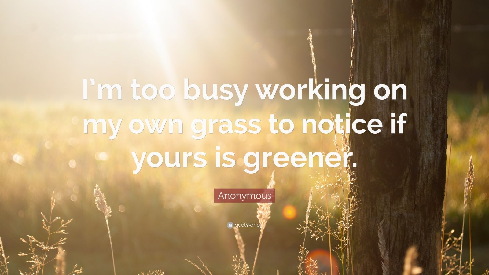 "Anonymous Quote: ""I'm too busy working on my own grass to notice if yours is greener."""